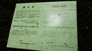 DSC_3453編